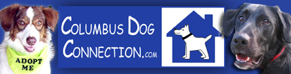 Dog resources in Columbus, Ohio